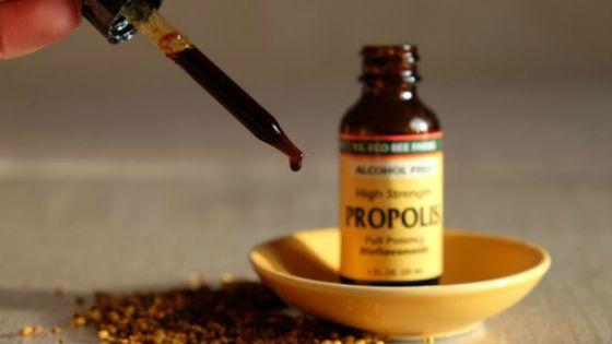 Propolis tentürü: uygulama ve tıbbi özellikler